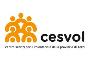 cesvolterni_nonprofitfactory